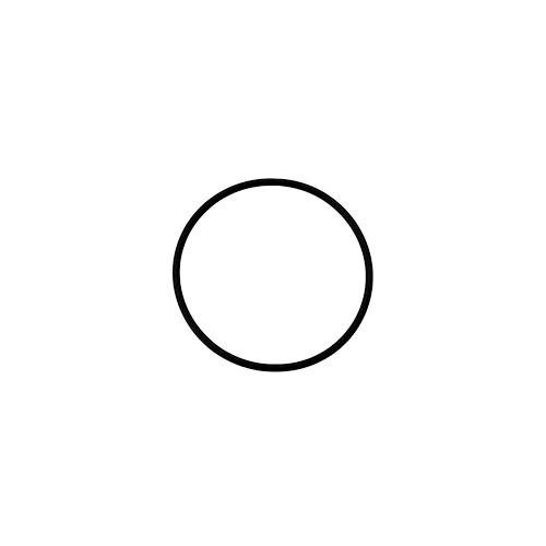 Pierścień uszczelniający 61,6x2,62 KARCHER